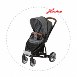 HARTAN I-mini RS grey melange